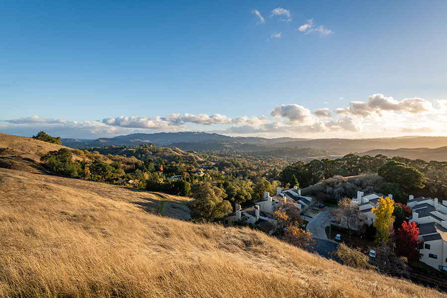 Contact - View of Diablo Trail and Surrounding City in Lafayette California